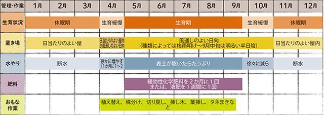 画像: うちわ型サボテンの栽培カレンダー
