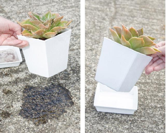 画像: 水やり直後と土が乾いた状態の鉢を持ち上げてみて、鉢の重さで乾き具合を確認するとよい。