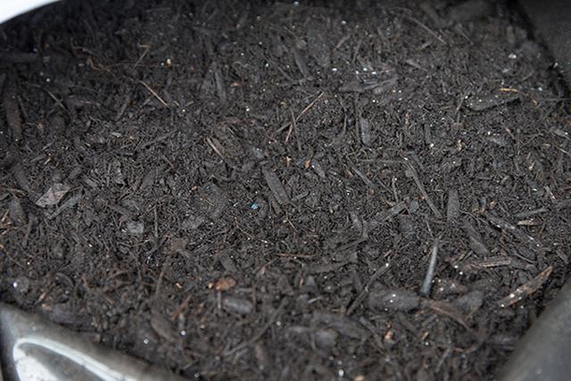 画像4: 用土の種類