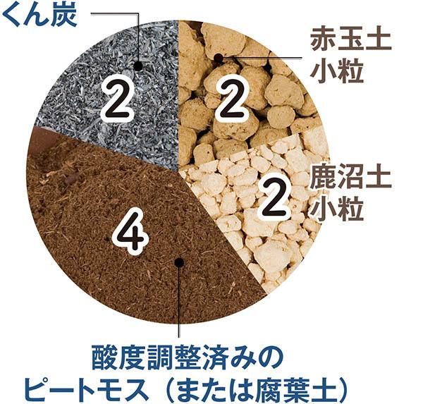 画像3: 多肉植物に適した用土とは?
