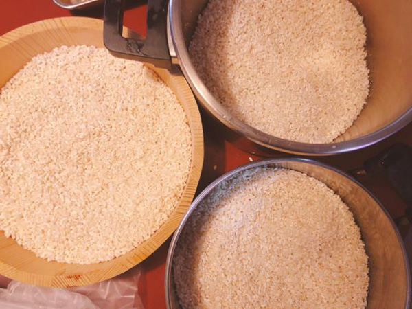 画像: 大きくて深い容器があると便利!私は米こうじを3等分しました。