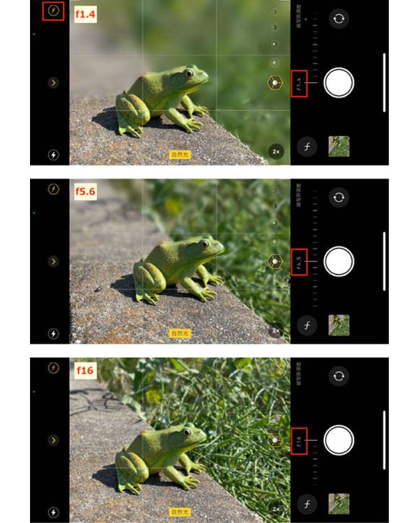画像: fの数値が小さいとボケ具合いが大きくなり、数値を大きくするとボケ具合いは小さくなる。