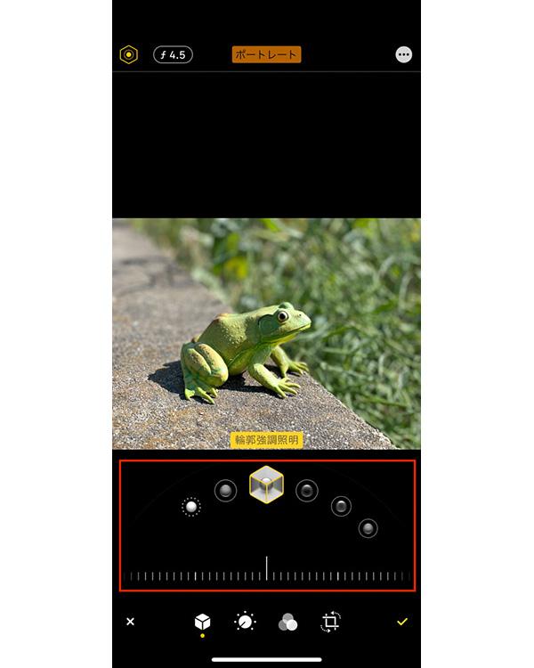 画像: 撮影時とは別の照明効果を選び直すことができる。