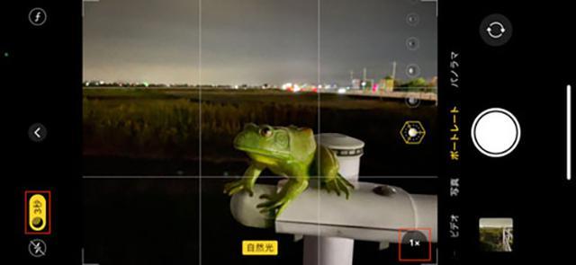 画像: 真っ暗な場所でポートレートモードの撮影ができるすごい機能だ。