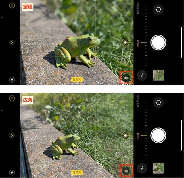 画像: 望遠レンズが搭載された、いわゆる「タピオカカメラ」のiPhoneが切り替えに対応している。