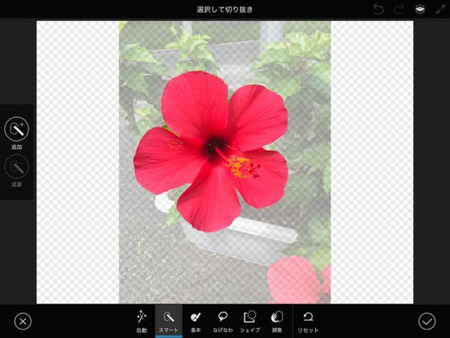画像: 花をざっくりなぞれば、正確な輪郭が自動で選択される。