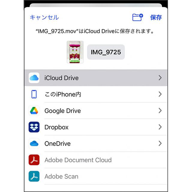画像: movというApple端末向けの動画ファイル形式で保存される。ただし、AndroidやWindowsで見るには変換が必要。