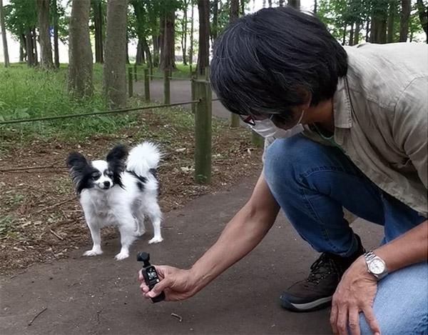 画像: ジンバルでペットの動きに追従 ActiveTrackでペットを撮影。このように低いアングルでも片手で無理なく動画撮影ができる。