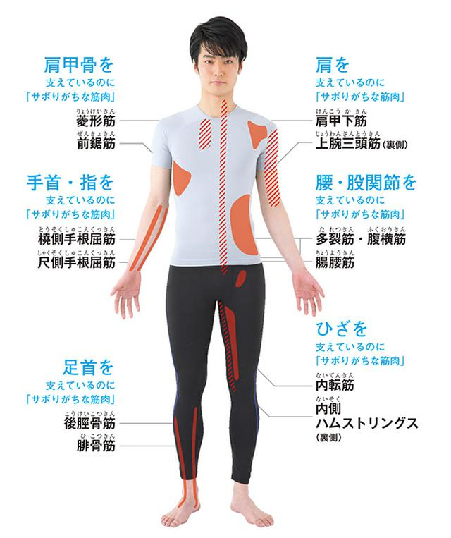 画像: 6つの重要関節を支える「12の筋肉(サボリ筋)」