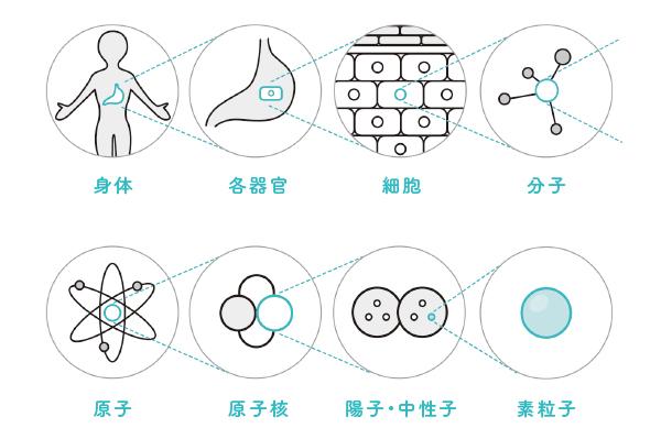 画像1: あなたは磁石であり、エネルギー体である