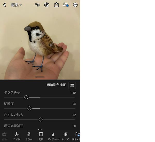 画像: 「効果」の項目では、ほかのアプリであまり見かけない「テクスチャ」や「かすみの除去」「周辺光量補正」といったマニアックな調整が可能。