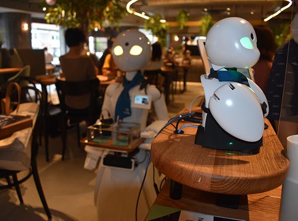 画像: ドリンクを運ぶOriHime-D(左)とテーブルで接客するOriHime(右)。