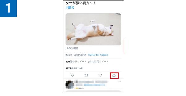 画像1: 【ツイッター】ツイッターの動画は「SYNCER」で保存