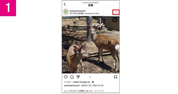 画像1: 【インスタグラム】インスタグラムの画像や動画を保存するなら「iGram」が便利