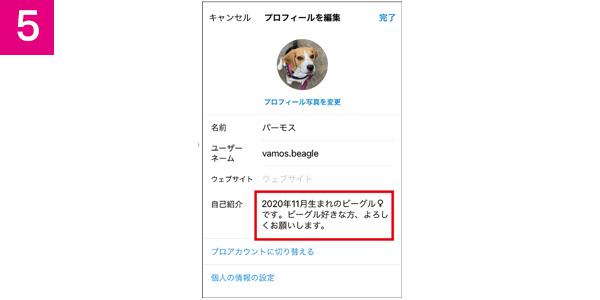 画像5: ▶インスタの既存ユーザーであっても、新規のアカウントを追加することができ、最大5個まで作れる