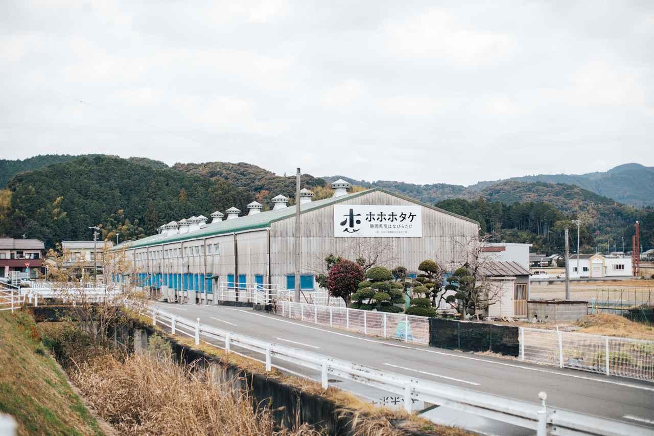 画像: 工場全景。屋根にもキノコが並ぶ!??