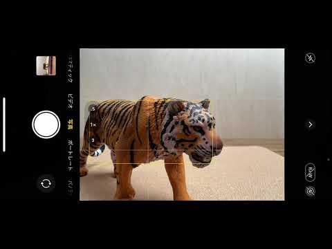 画像: iPhone 13 Pro マクロ撮影:カメラの自動切り替え youtu.be