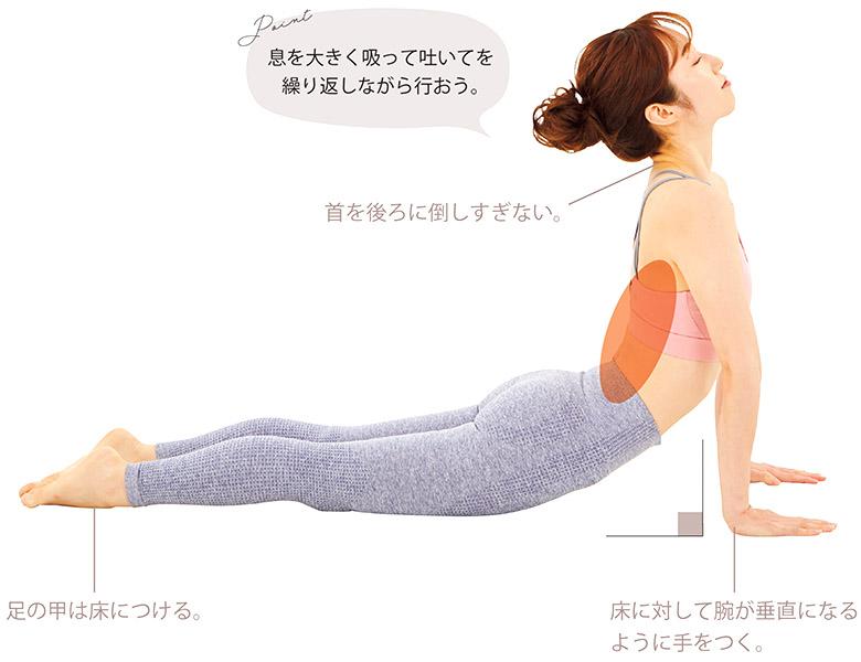 画像1: stretch 2 背中まわりの筋肉をほぐす
