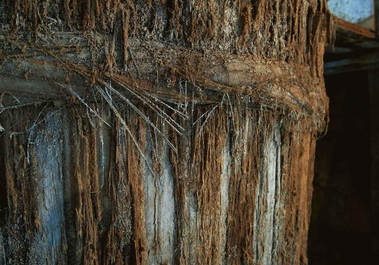 画像: かんなで手彫りされた木桶。長年、醤油を吸ってふかふかになった杉桶には、発酵に欠かせない微生物たちが好んで棲みつく