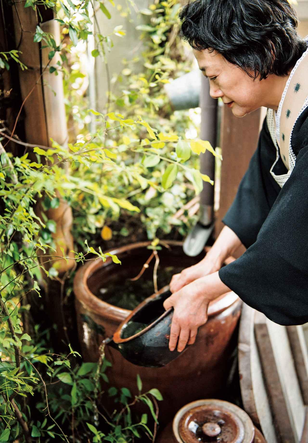 画像: 玄関の軒先で、雨水をためたかめから鉢植えに水をやる横山さん。家全体が緑に包まれている