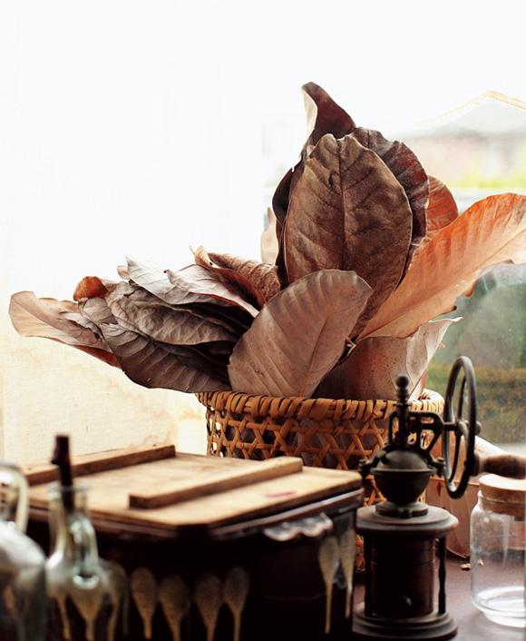 画像: 庭の朴葉を乾燥させ、台所に常備。殺菌作用があるので、お弁当やお寿司の下に敷いたり、朴葉味噌をつくったりする