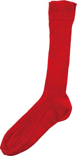 画像: 「アーツ&サイエンス」のウール混靴下