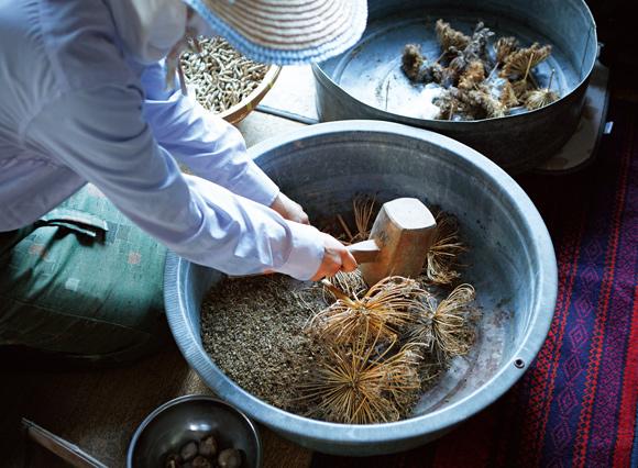 画像: 作物の実を乾燥させ、木槌で叩いて種を採種する