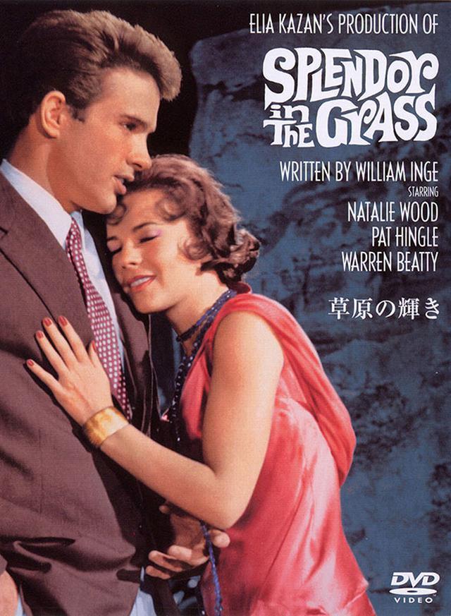 画像: 『草原の輝き』1961年 アメリカ 監督:エリア・カザン ワーナー・ブラザース ホームエンターテイメント DVD 1,429円