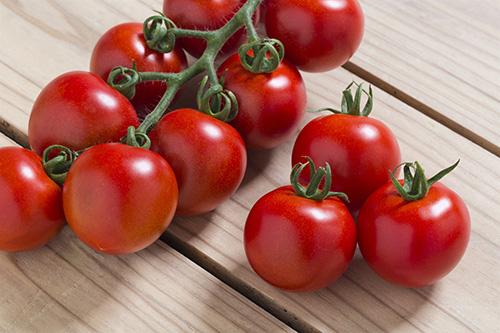 画像: 「フルティカ」はリコピン豊富な中玉トマトで、甘さもしっかりあります。果肉の歯ざわりがよく、皮が薄くて食べやすいのもいいところ