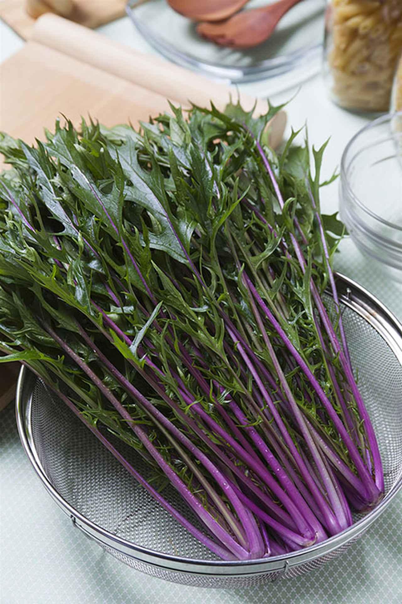 画像: 「紅法師」は、緑と赤紫のコントラストが鮮やかな水菜。アントシアニンを多く含み、クセのない味わいは、サラダをはじめ幅広い料理に使えます