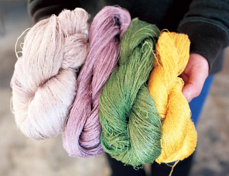 画像: 染色後の糸。黄色はコガネバナ、緑は桑茶、濃淡の紫はコチニールで染めた。購入した染料のほか、近所でとれる栗やカエデ、クルミなどを使って染めることもある
