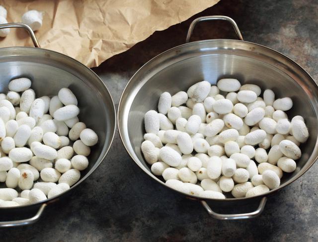 画像: 糸を引く作業の前に、繭をお湯で煮て、水分を浸透させ、糸をほぐす。時間はおよそ15分だが、気温などによって調整する