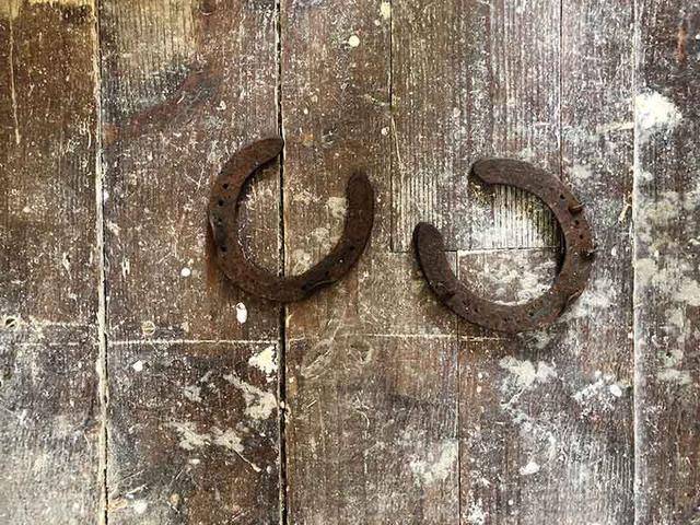 画像: 床下からはなぜか馬の蹄鉄も出てきました