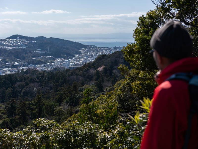 画像: 尾根に出たら海が見えました! ここは東京湾と相模湾の両方が見える場所