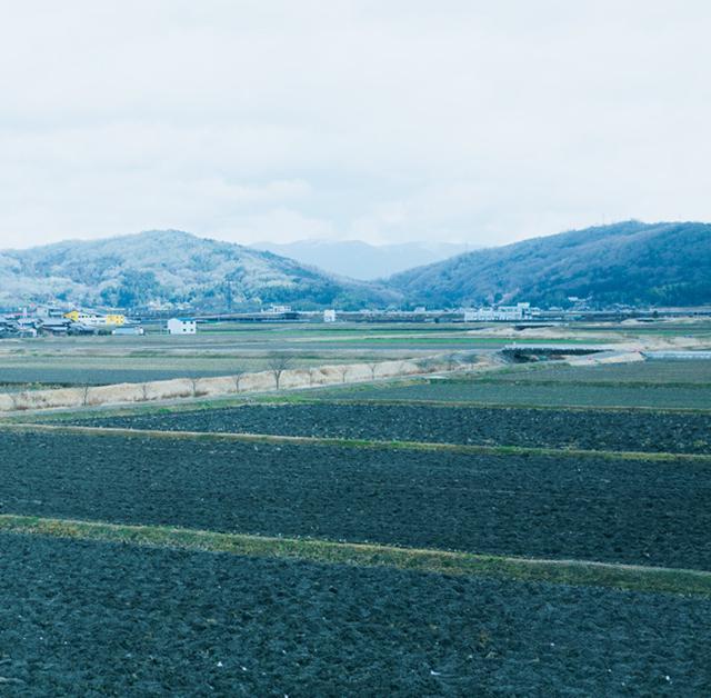 画像: アトリエの窓からは、自然豊かな伊賀の風景が眺められる。時間帯や季節によって移ろう様子を見つめることが、何よりの贅沢