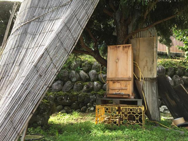 画像: 2015年、はじめて蜜絞りを見せていただいたAさんの蜂の巣箱。天竜川を見下ろす絶好の場所に、よしずで適度に日差しを遮って置かれているその様子に、Aさんの蜂への愛情が伝わってきます