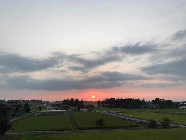 画像: 田んぼに沈みつつある夕陽