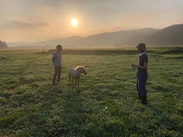 画像: ポニーと朝の散策