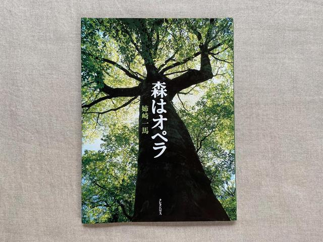 画像: タイトルの森の字に、新芽が。