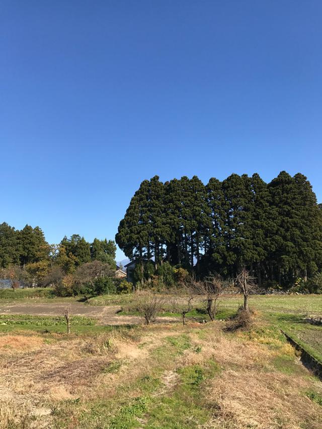 画像: 田園風景