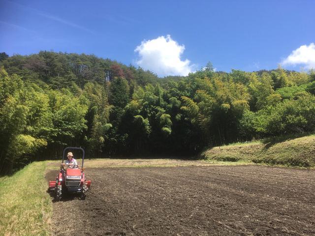 画像: トラクター初挑戦のようす。この機械でまず田んぼの土をふかふかに起こし、その後、土を平らにならし(代かき)、やっと田んぼに水が入れられます