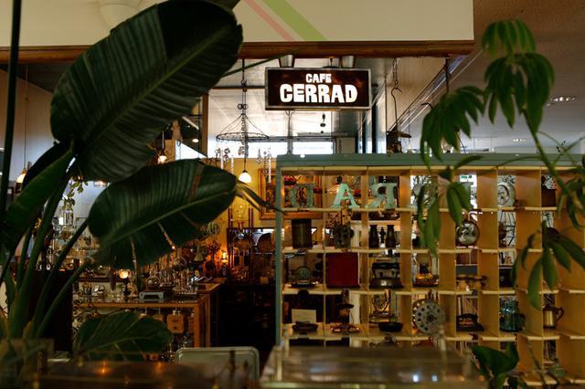 画像: カフェセラード店頭のようす。その魅惑的なディスプレーは、私がかつてアルバイトをしていた珈琲店「邪宗門」のことも思い出させてくれます(撮影:佐々木健太)