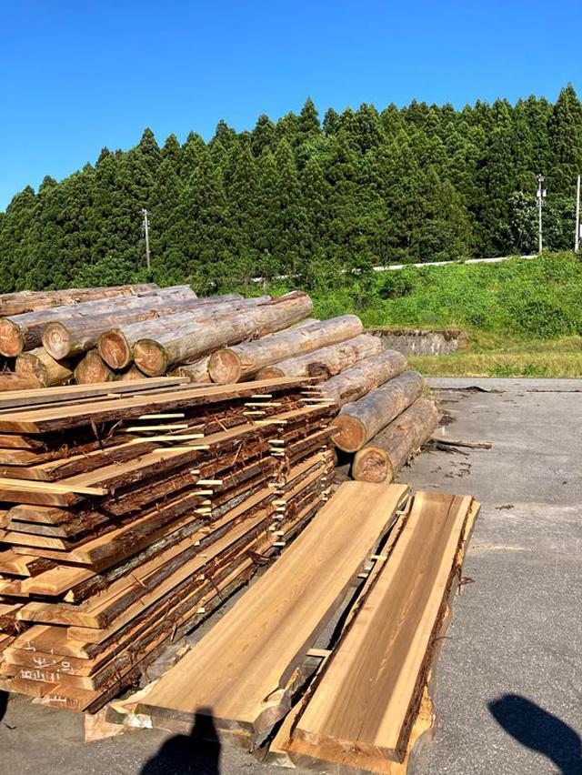 画像: 立山山麓森林組合の加工場でカウンターと机にする材木を選びました。