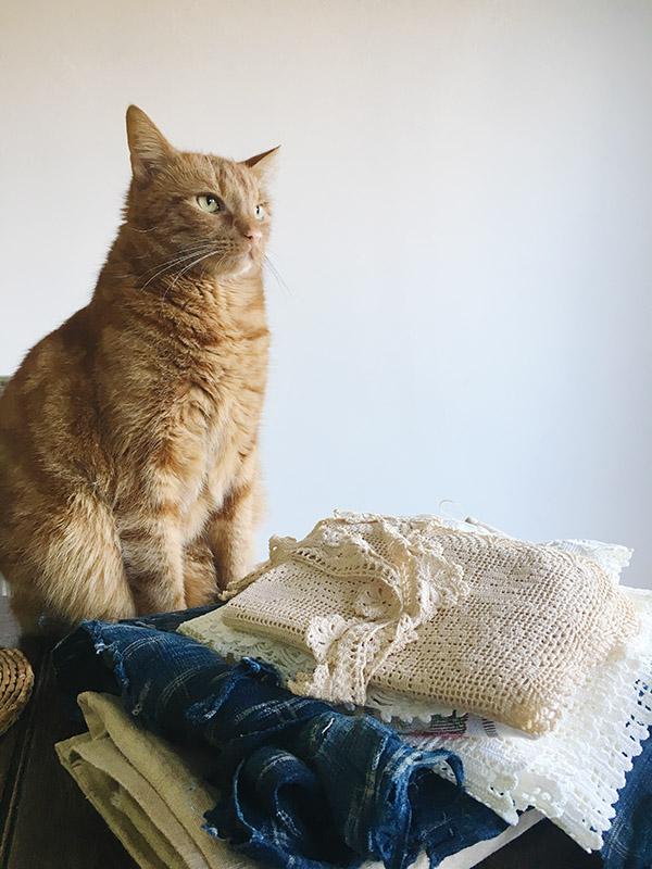 画像: アンティークの布の横で、何かを考え中のディエゴ。創作意欲を刺激されたのかな?