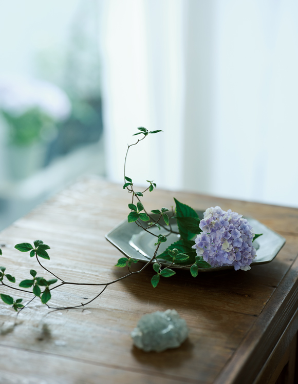 画像: 巻頭特集 平井かずみさん いつもの器で愉しむ花しつらい