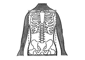 画像: 体のゆがみを取る「胴体力」トレーニング|骨盤、肩、股関節に集中した修正運動