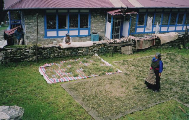 画像5: 村暮らし、まちあるき。 第17回 ネパール2004、旅の記憶をたどって|玉木美企子