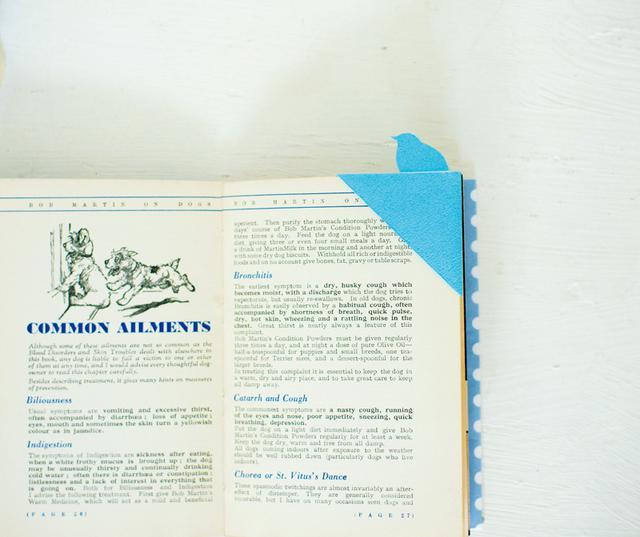 画像: ページの角を差し入れて使う、しおり。身近な道具でつくれる手軽さも魅力。何枚もつくって、お気に入りのページに挟んでも。作品は文庫本サイズ(約幅21×高さ15cm)