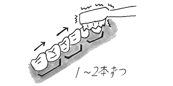 画像3: 電動歯ブラシを使う際のポイント