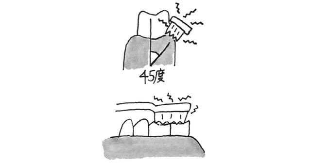 画像2: 電動歯ブラシを使う際のポイント
